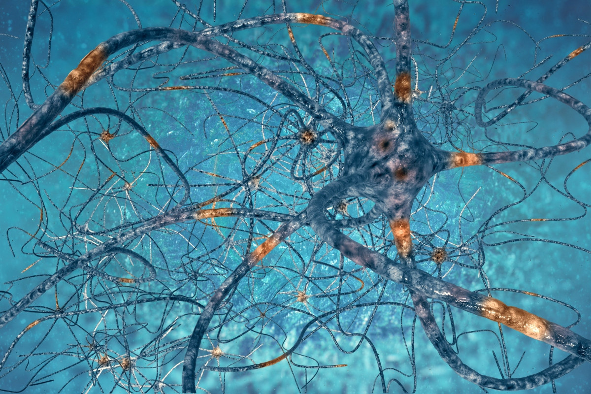 """Significant loss of neurons is a normal part of ageing"" and other brain cell myths"